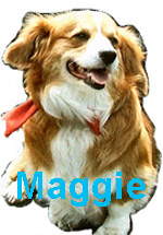 maggie